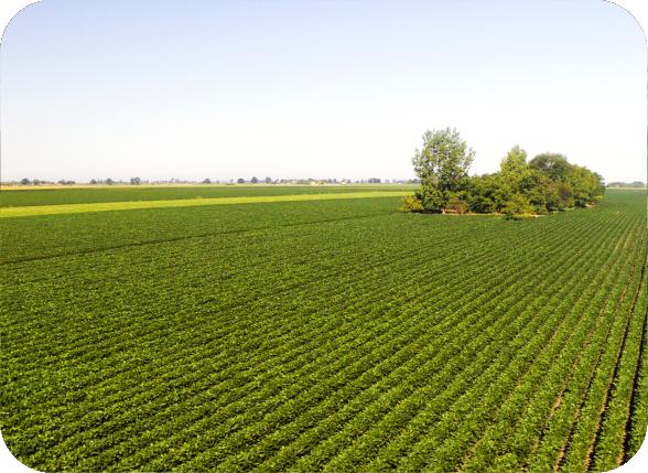 farm-equity